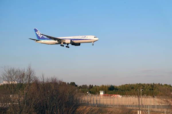 さくらの山公園_成田空港-01.jpg