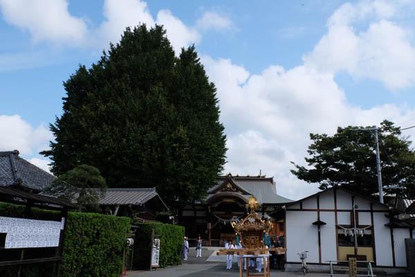 子守神社例大祭 境内遠景-01.jpg