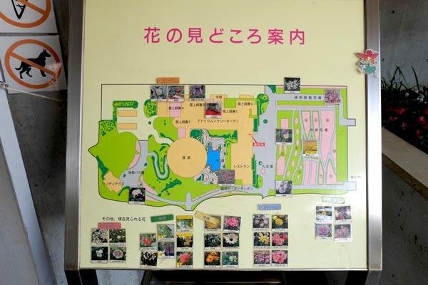 山陽メディアフラワーミュージアム-050.jpg