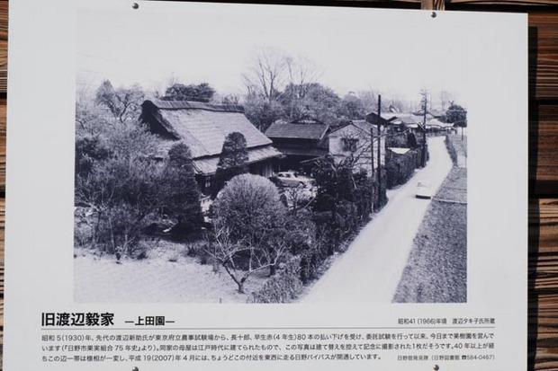 日野七福神めぐり13.jpg