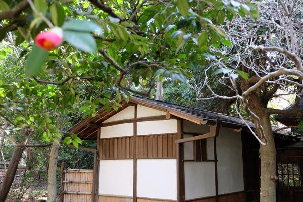 東京国立博物館庭園開放_六窓庵-08.jpg