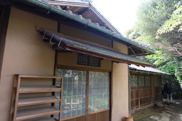 東京国立博物館庭園開放_転合庵-07.jpg