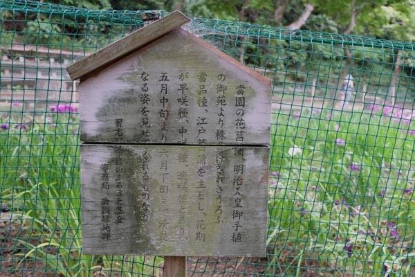 森林公園-13.jpg