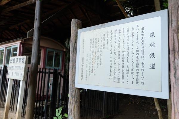 森林鉄道-10.jpg