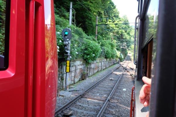箱根アジサイツアー_箱根登山鉄道-08.jpg
