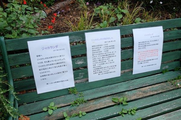 夢いっぱいの町真砂花壇作りの会-07.jpg